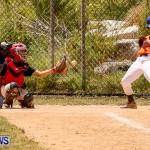YAO Youth Baseball Bermuda, May 3 2014-11