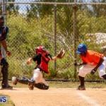 YAO Youth Baseball Bermuda, May 3 2014-32