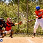 YAO Youth Baseball Bermuda, May 3 2014-33