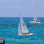 Edward Cross Long Distance Comet Sailing Race Bermuda, June 16 2014-110