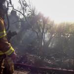 Paget Brush Fire Bermuda, June 20 2014-10