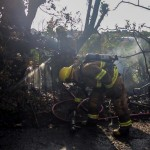Paget Brush Fire Bermuda, June 20 2014-11