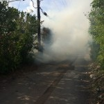 Paget Brush Fire Bermuda, June 20 2014-3