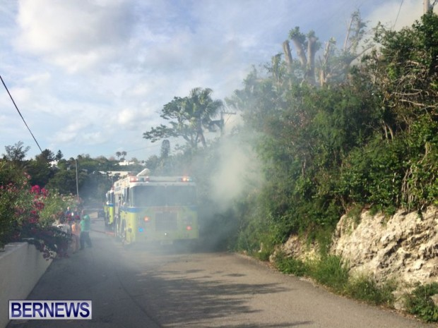 Paget Brush Fire Bermuda, June 20 2014-5