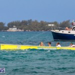 Round The Island Seagull Race Bermuda, June 14 2014-212