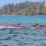 Round The Island Seagull Race Bermuda, June 14 2014-214