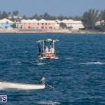Round The Island Seagull Race Bermuda, June 14 2014-96