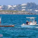 Round The Island Seagull Race Bermuda, June 14 2014-97