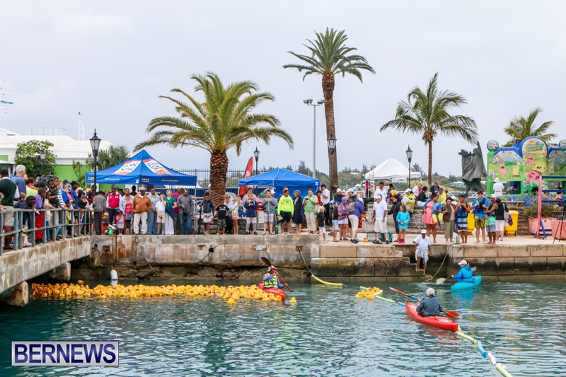 Rubber Ducky Derby Bermuda, June 1 2014-30