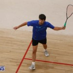 Squash Bermuda, June 13 2014-29