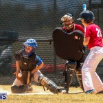 Youth Baseball Bermuda, June 22 2014-1