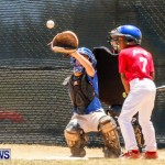 Youth Baseball Bermuda, June 22 2014-13