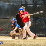 Youth Baseball Bermuda, June 22 2014-15