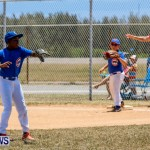 Youth Baseball Bermuda, June 22 2014-18