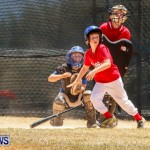Youth Baseball Bermuda, June 22 2014-20