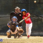 Youth Baseball Bermuda, June 22 2014-38