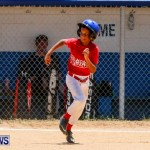 Youth Baseball Bermuda, June 22 2014-7