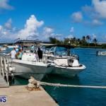 Lionfish Groundswell Bermuda, July 19 2014-10