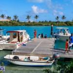Lionfish Groundswell Bermuda, July 19 2014-28