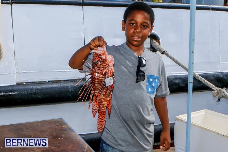 Lionfish Groundswell Bermuda, July 19 2014-6
