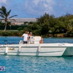 Lionfish Groundswell Bermuda, July 19 2014-9