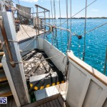 TS Lord Nelson Training Tall Ship Bermuda, July 20 2014-69