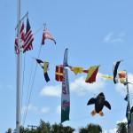 2014 bermuda non mariners race a wade  (11)