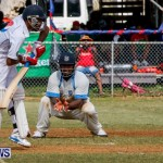 Cup Match Day 1 Bermuda, July 31 2014-116