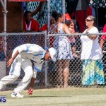Cup Match Day 1 Bermuda, July 31 2014-120