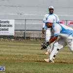 Cup Match Day 1 Bermuda, July 31 2014-121