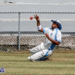 Cup Match Day 1 Bermuda, July 31 2014-124