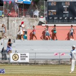 Cup Match Day 1 Bermuda, July 31 2014-126