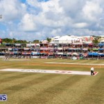 Cup Match Day 1 Bermuda, July 31 2014-146