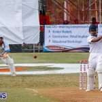Cup Match Day 1 Bermuda, July 31 2014-152