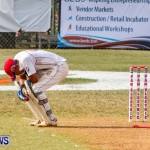 Cup Match Day 1 Bermuda, July 31 2014-162
