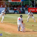Cup Match Day 1 Bermuda, July 31 2014-168