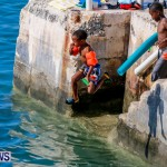Non Mariners Bermuda, August 3 2014-134