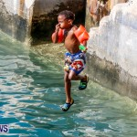 Non Mariners Bermuda, August 3 2014-146