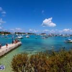 Non Mariners Bermuda, August 3 2014-2
