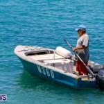 Non Mariners Bermuda, August 3 2014-35