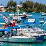 Non Mariners Bermuda, August 3 2014-37