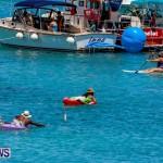 Non Mariners Bermuda, August 3 2014-7