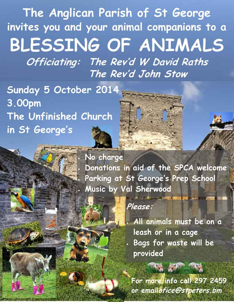 animal-blessing-5-Oct-2014