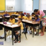 back-to-school-bermuda-76