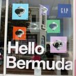 Bermuda Gibbons Passion In Art 2014 (2)
