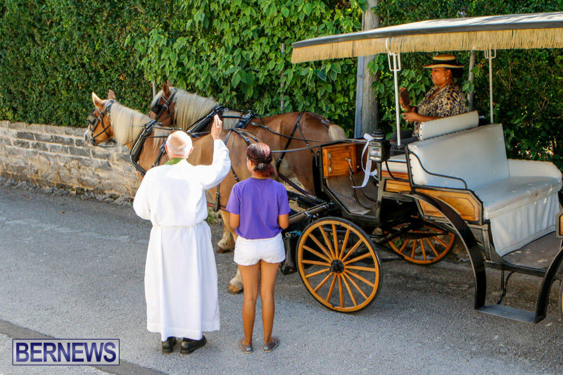 Blessing-Of-The-Animals-Service-Bermuda-October-5-2014-29