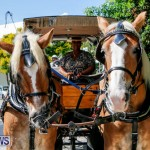 Blessing Of The Animals Service Bermuda, October 5 2014-4