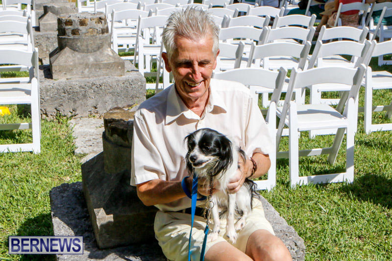 Blessing-Of-The-Animals-Service-Bermuda-October-5-2014-7