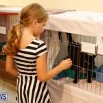 SPCA Fun Fair Bermuda, October 11 2014-61