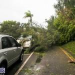 Tropical Storm Fay Bermuda, October 12 2014-103